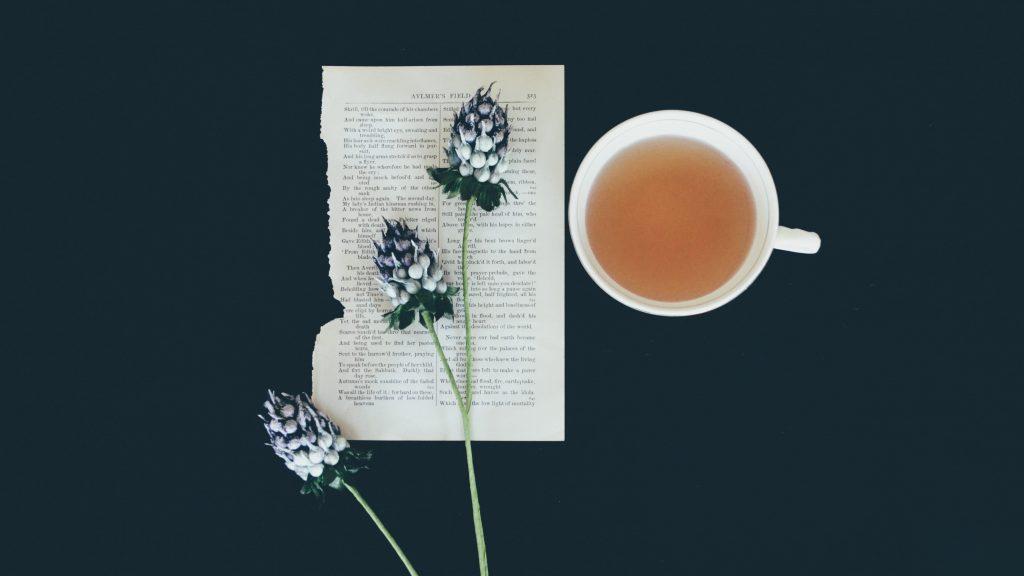 最天然的養生茶飲牛蒡茶減肥|牛蒡茶功效|買茶最推薦- 無可挑Tea