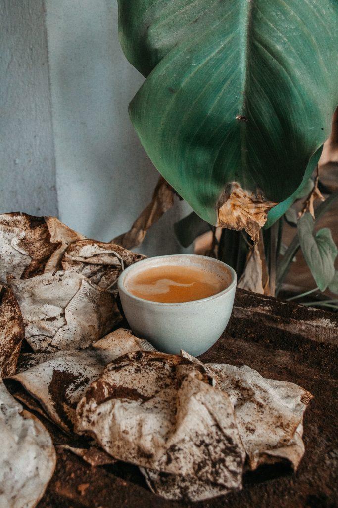 中國十大名茶之一|中國碧螺春茶|買茶葉最推薦「無可挑Tea」